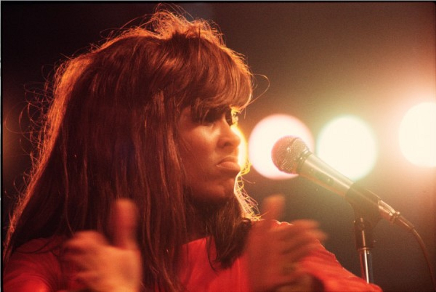 Tina Turner/Central Park 1970, by Walter Iooss.